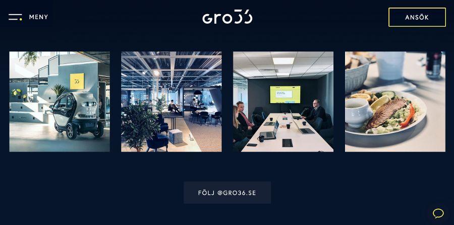 Gro36